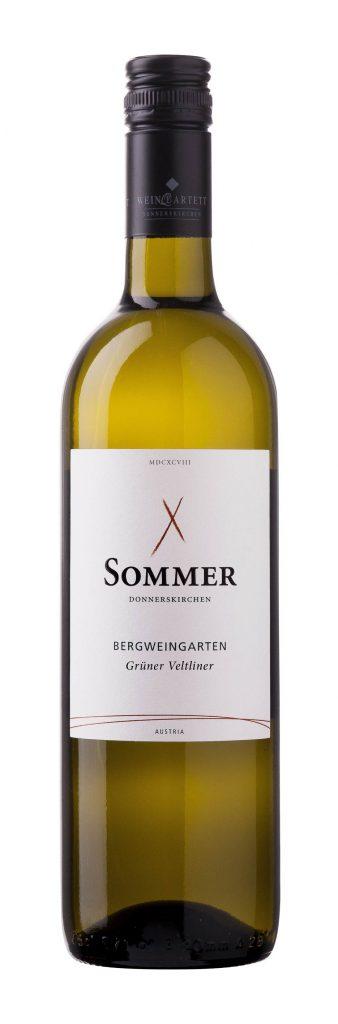 Grüner Veltliner Bergweingarten M